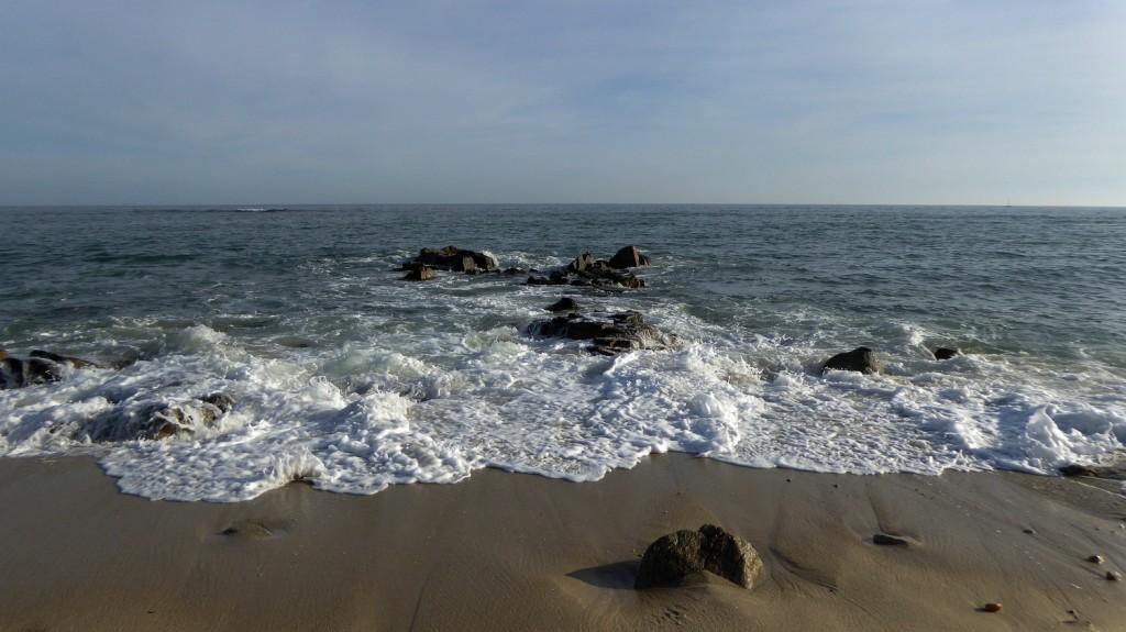 Regarder la mer mars 2015 (1)