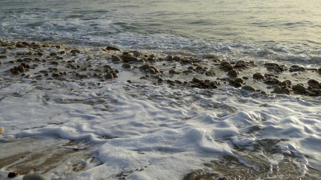 Regarder la mer mars 2015 (5)