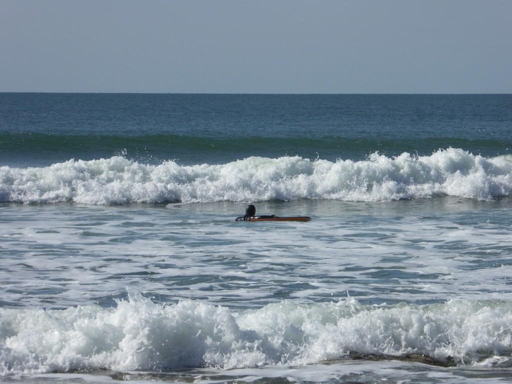 surf quiberon février 2016 (10)