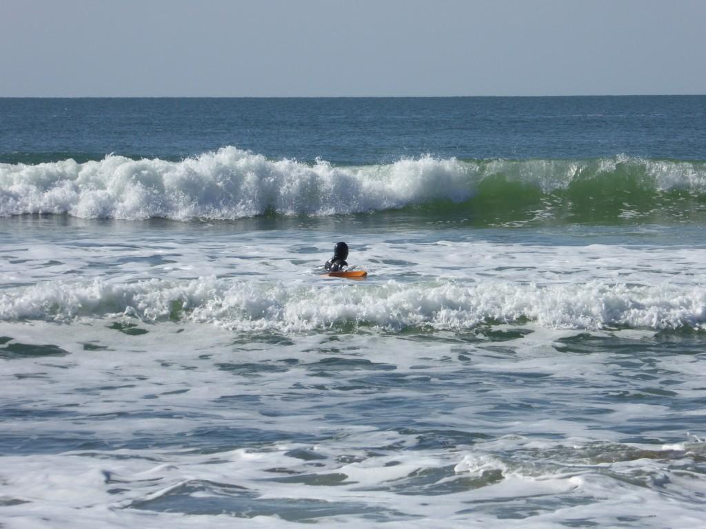 surf quiberon février 2016 (12)