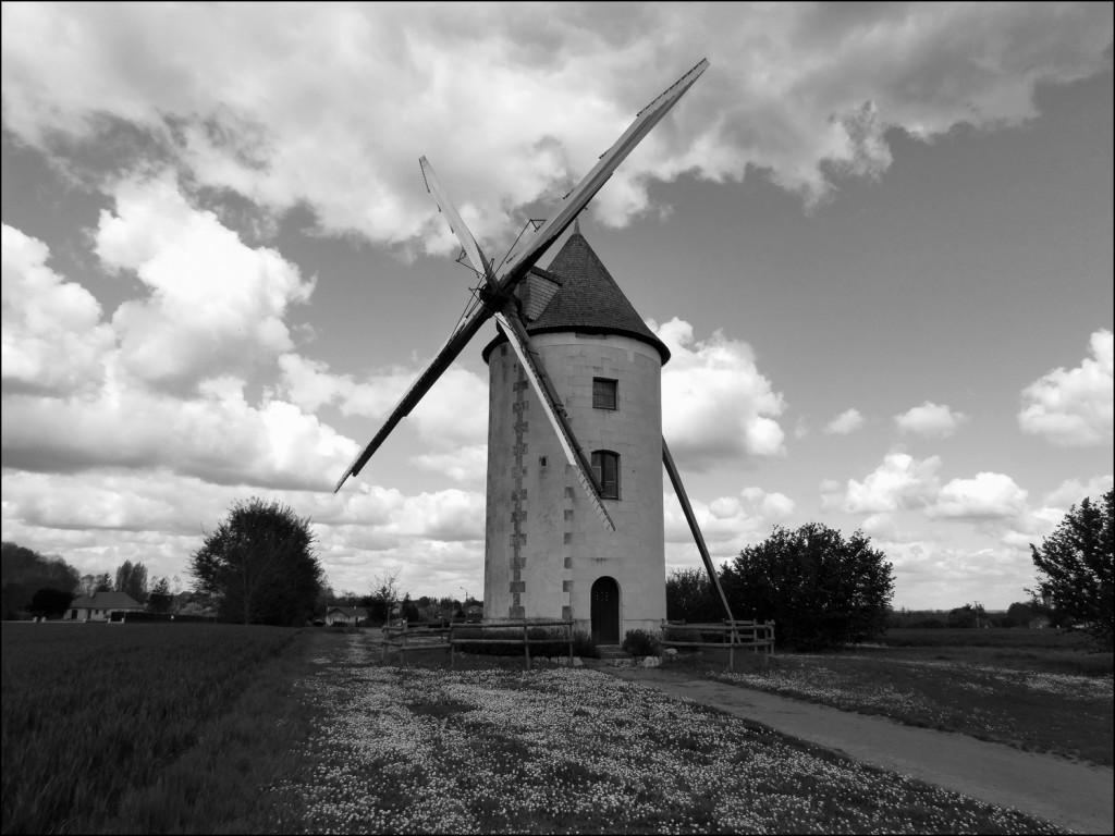 Moulin  (2)